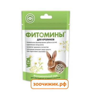 Беременность у кроликов: сколько