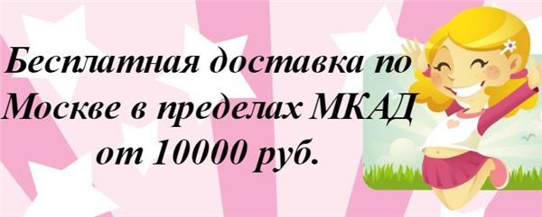 Текущая акция - бесплатная доставка по Москве.