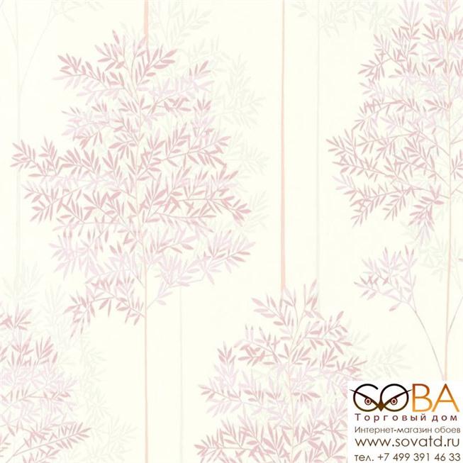 Обои A.S. Creation 36626-4 Colibri купить по лучшей цене в интернет магазине стильных обоев Сова ТД. Доставка по Москве, МО и всей России